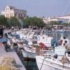 Nr. 196168_Aegina