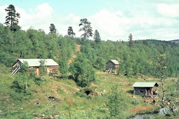 Von Wald umgebene Holzhütten am Morgamoja im Nationalpark Lemmenjoki.