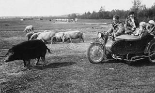 192706_Motorradausflug