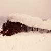 Nr.: 191721_Dampzug im Schnee, 1986