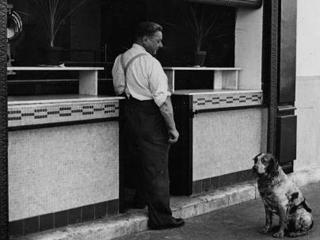 hund-und-herr_190232