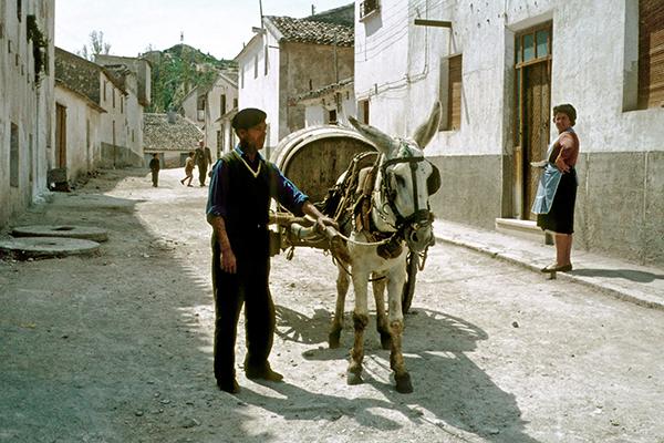 Mann mit Eselskarren in einem Dorf