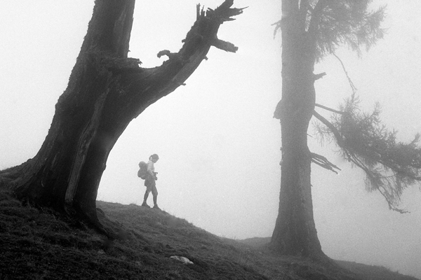 Frau und Baum im Nebel auf der Bachlalm (Alm) im Dachsteingebiet in Österreich.