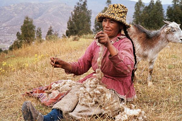 Eine ‰ltere Indiofrau mit Ziege und Spindel an einem Hang in Ainko.