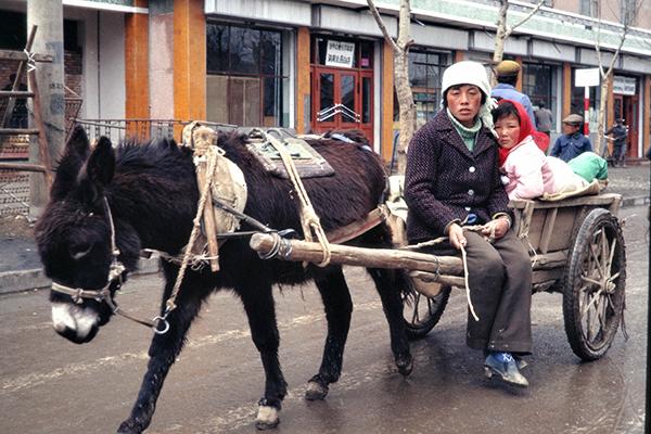 Kinder fahren auf einem Eselkarren auf einer Stra?e in Xining.