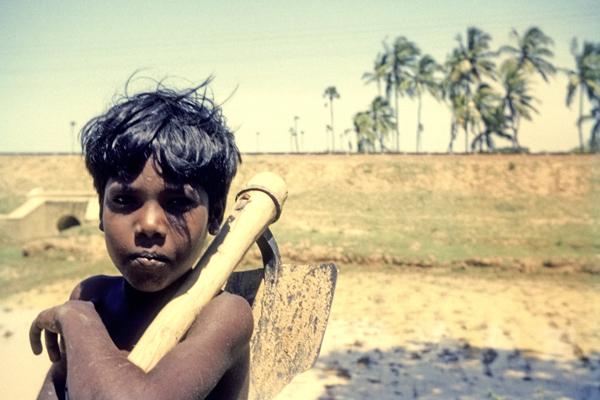 Ein Junge mit Werkzeug vor einem Reisfeld in Tamil Nadu.