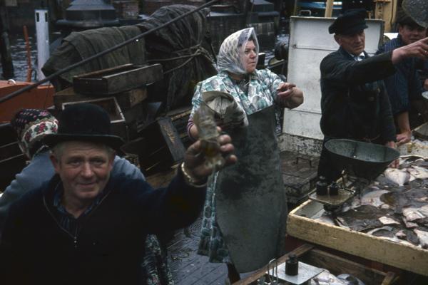 Im Fischmarkt von Hamburg verkaufen Fischer Schollen vom Kutter aus.