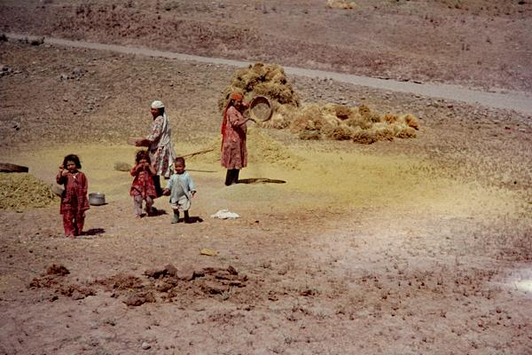 In Turkmanchai stehen drei Kinder neben zwei Frauen, die mit Sieben Korn und Spreu trennen.