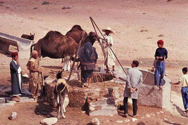 Männer und Frauen schöpfen Wasser aus einem Brunnen in der Wüste, um sich und ihre Tiere versorgen zu können.