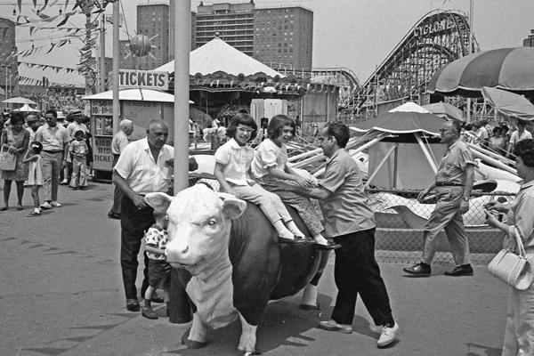 Ein Vater und seine zwei Kinder, die auf einer Kuhskulptur hocken, auf einem Coney Island Boardwalk mit einem Achterbahn-Gerüst im Hintergrund.