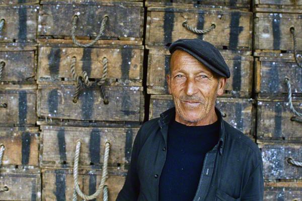Portrait eines Portugiesen.