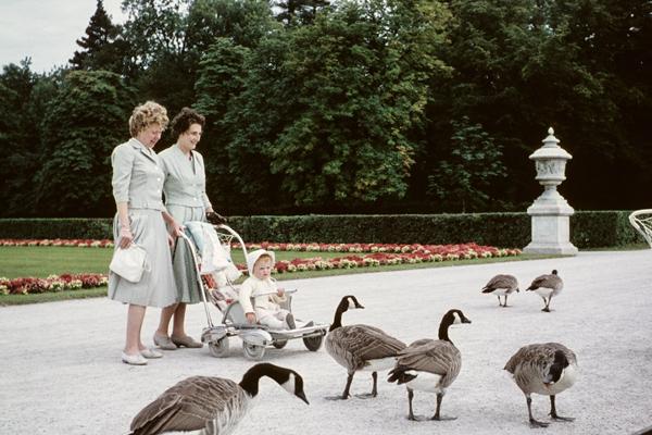 Eine Mutter, ihre Tochter im Kinderwagen und eine Freundin beobachten Gänse im Schlosspark Nymphenburg in München.