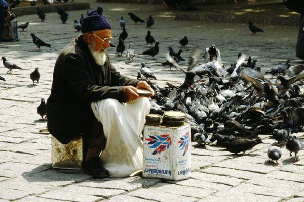 Ein Alter Mann sitzt in Istanbul auf einem Platz und füttert Tauben.