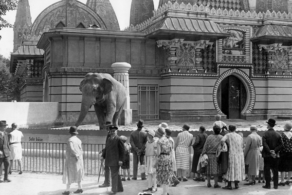 Besucher des Berliner Tiergarten vor dem neugeschaffenen Tummelplatz der Dickhäuter, wo sie sich von nun an frei und ohne Gitter bewegen können. Die Aufnahme entstand um 1930.