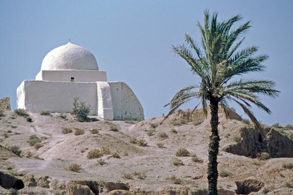 Marabut in einer Palmenoase beim Berberort Matmata, Tunesien
