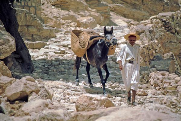 Mann mit Esel beim Berberort Matmata, Tunesien