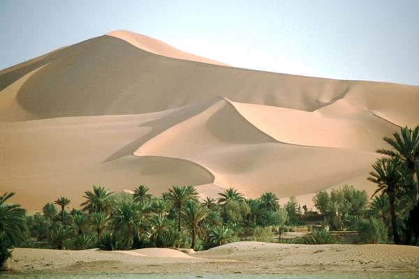Oase und Sanddünen im westlichen Großen Erg (Sandwüste), Algerien