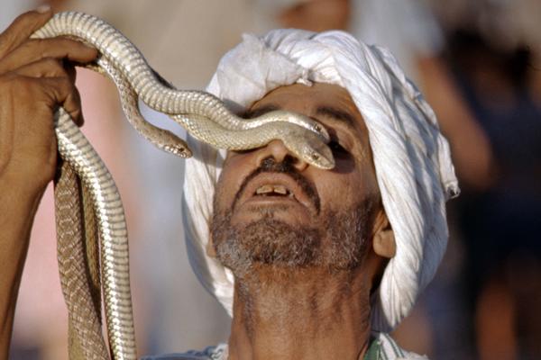 Schlangenbeschwörer auf dem Gauklerplatz in Marrakesch, Marokko