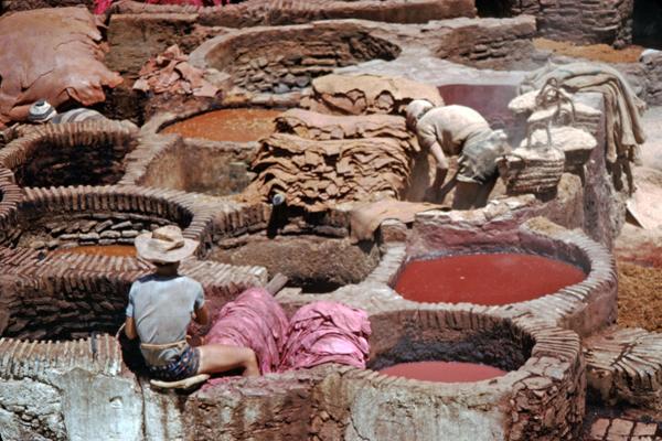 Fellgerberei in den Souks von Fes, Marokko
