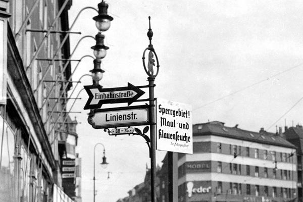 Bekämpfung der Maul- und Klauenseuche in Berlin. An einer Straßenlaterne am Rosenthaler Platz hängt ein Schild mit der Aufschrift 'Sperrgebiet! / Maul- und / Klauenseuche / Der Polizeipräsident'.