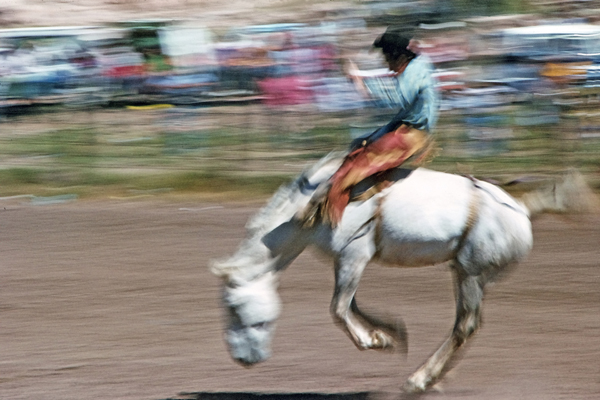 Ein Reiter auf einem Mustang beim Rodeo in Grants in New Mexico.